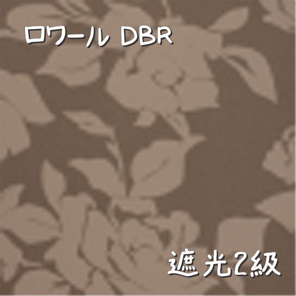 ロワール DBR 生地画像